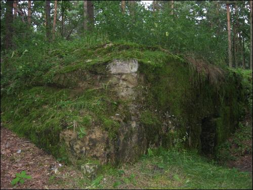 -  Defensive Fortifications.